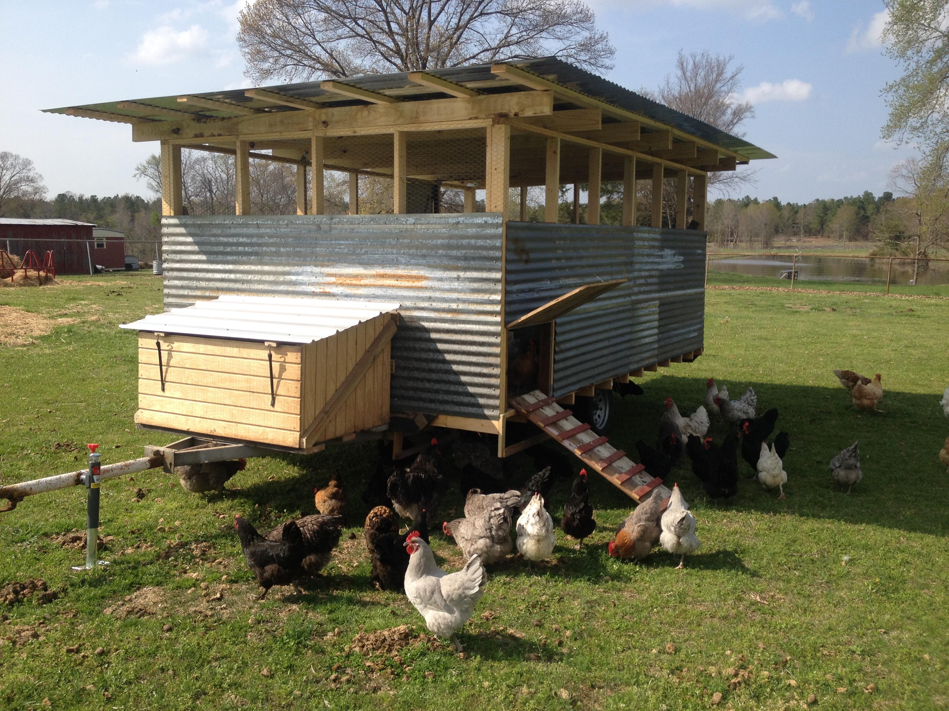 Pasture Raised Eggs Mahaffey Farms